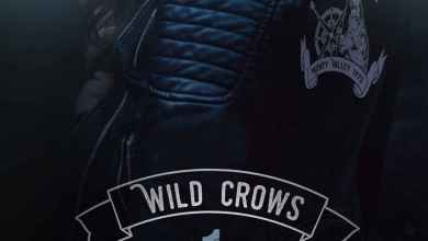 Photo de Wild Crows T1 : Addiction de Blandine P. Martin