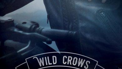 Photo de Wild Crows T2 :  Révélation de Blandine P. Martin