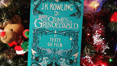Photo de Les Crimes de Grindelwald – Le Texte du Film de J.K. Rowling