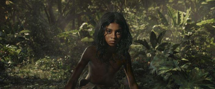 Mowgli 05