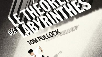 Photo de Le théorème des labyrinthes de Tom Pollock