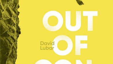 Photo de Out of Control de David Lubar