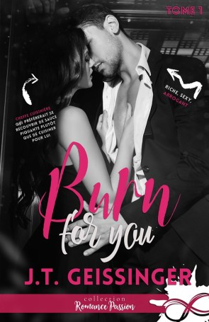 Burn For You de J.T. Geissinger