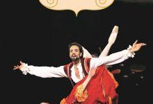 Photo of Don Quichotte (le roman du ballet) de Pascale Maret