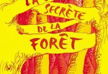 Photo of La vie secrète de la forêt de Grégoire Solotareff