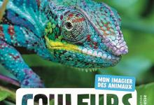 Photo of Couleurs – Mon imagier des animaux de Naturagency
