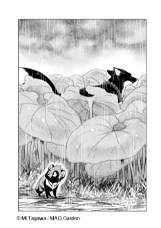 Le Renard et le petit Tanuki planches