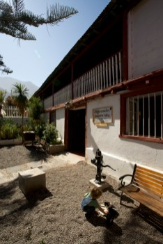 VICUNA / visite de la pisquera Alba (distillerie de pisco)