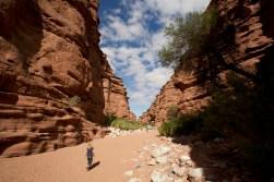 PN Talampaya / Petit canyon de 10km de long