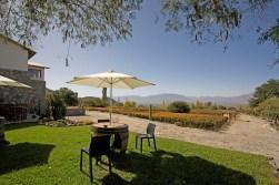 CAFAYATE / Degustation et picnic à la bodega Domingo Molina