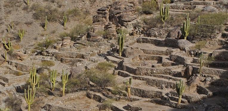QUILMES / Ruines de la cité sacré des Quilmes, considérée comme l'une des premières villes préhispaniques en Argentine