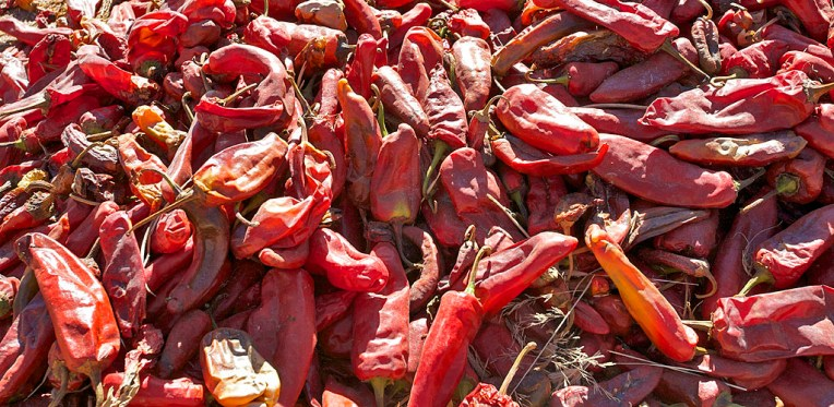 VALLEE CALCHAQUIE / San José (piments)