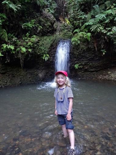 PN MADIDI / Dans la selva (jungle) : première sortie vers une cascade.