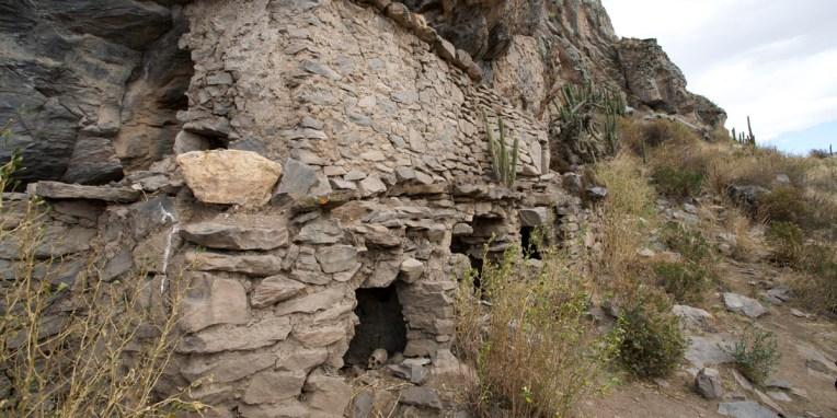 CANYON DE COLCA / Balade sur les hauteurs de Coporaque : sépultures incas au pied de la falaise (site Sh'Iqra)