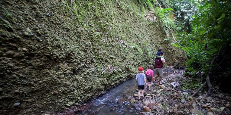 PN MADIDI / Dès notre arrivée, une petite balade jusqu'à une cascade proche du lodge