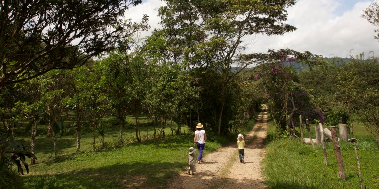 MINDO / En route vers la ferme aux papillons