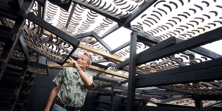 FINCA SANTA ELENA / Séchoir à banane : les fruits collectés entre les caféiers (ombre des bananiers indispensable pour ces derniers) sont disposés sur des chassis qui resteront qq jours dans un abris dont le toit transparent capte la chaleur des rayons du soleil.