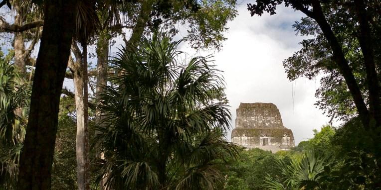 TIKAL, l'un des plus grands sites archéo de la civilisation maya perdue dans la forêt tropicale de feuillus et de palmiers. Entre 200 et 900 ap. JC, Tikal était la capitale de l'un des états mayas les plus puissants. Un peu moins de 90.000 personnes vivaient ici. A la fin du IXe siècle, la grande majorité de la population avait déserté la ville, certainement à cause de la surpopulation et du manque de production agricole. Certain vous diront que c'est à méditer… Sur la photo, le sommet du temple IV qui culmine à 65m, faisant de lui la plus haute structure pré-colombienne des Amériques