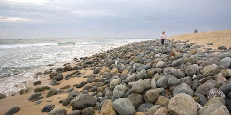 BAJA CALIFORNIA / Playa de Todos Santos