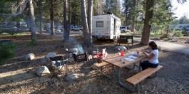 SEQUOIA / Campground