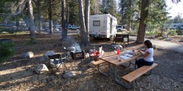 SEQUOIA / Campground