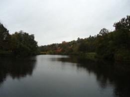 Winkworth Arboretum - West Sussex