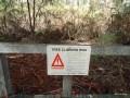 076-Tree climbing risk - Oz