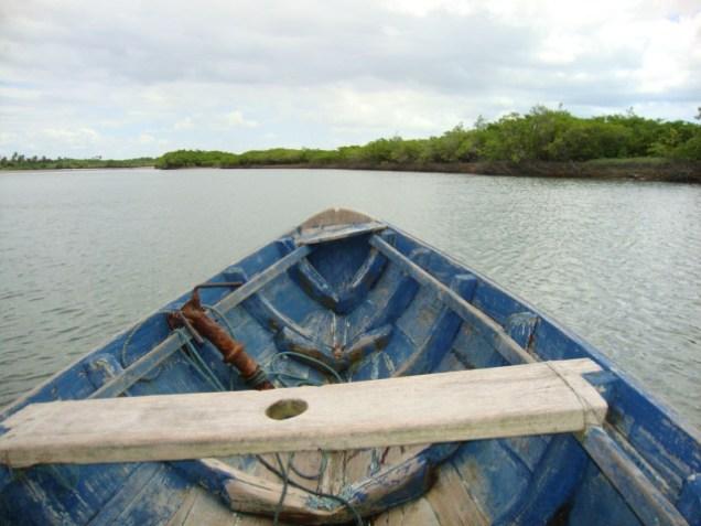 0374-3o-dia-passeio-de-barco-cavalo-marinho-jericoacoara