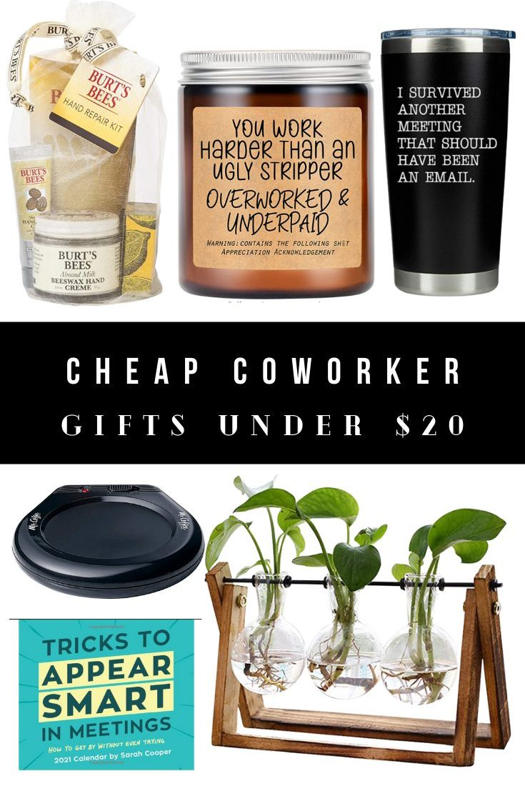 Cheap Coworker Gifts Under $20 – Funny Gift Ideas for Colleagues