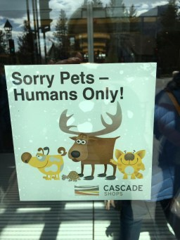 No animals in the store please! Banff main street.