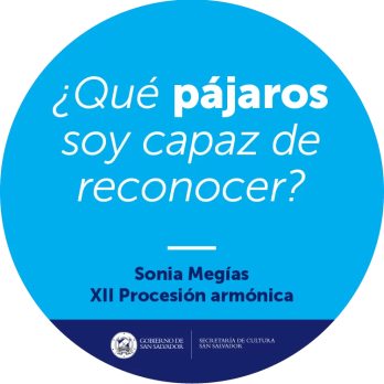 2017'II'19. XII Procesión Armónica - pegatina pájaros