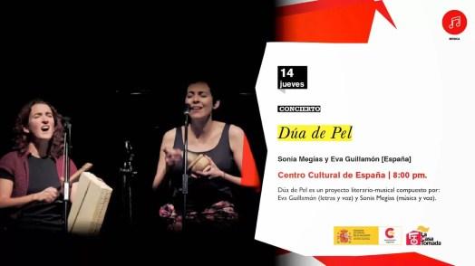 2015'V'14. Concierto Dúa de Pel - cartel