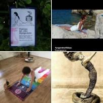 Condivisione Cobra