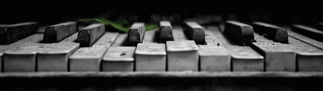 Old black and white piano with a colored leaf