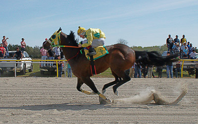 Photos / photography sample of a horse track race in Nashville Tennessee from SonicGrifMedia