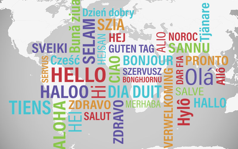 SonicGrifMedia Provides Professional and Reliable Spanish Translation Services for your Website