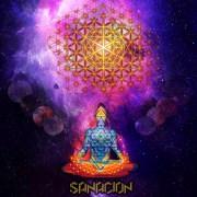 Mexican Psychedelic Trance Music album - Sanacion
