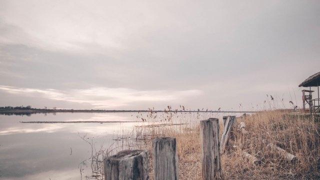 Banja Rusanda trska na obali u blizini vidikovca