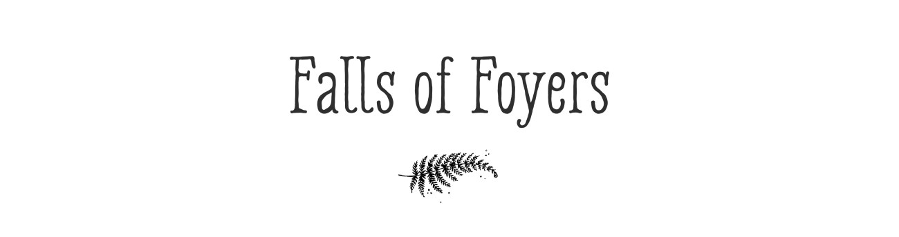 header_fallsoffoyers