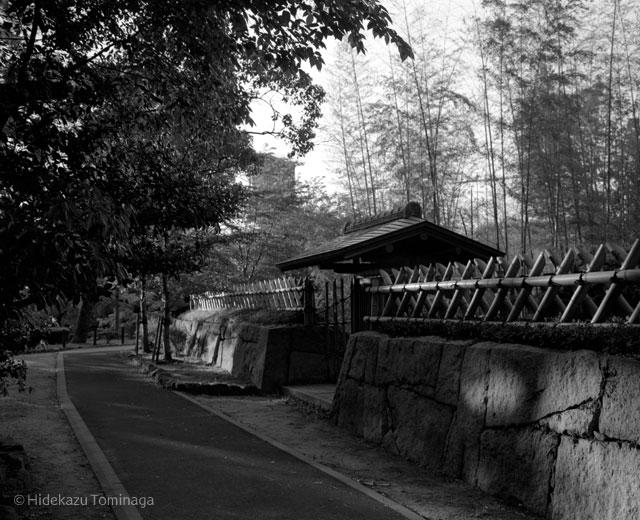 中村公園04