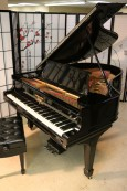 Steinway O Grand Piano Totally Reblt/Refin. $21,500 (VIDEO)  Steinway Action