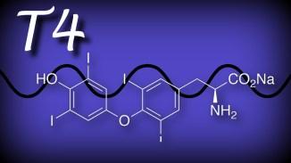 thyroxine