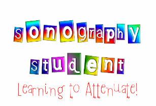 sonography_student_gifts_travel_mug-rea8a06e345a14f98a7439f3f48f5346e_x7jgp_8byvr_307
