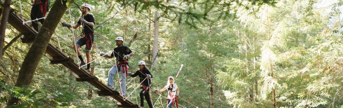 About Us Sonoma Canopy Tours & sonoma canopy tours 6250 bohemian highway occidental ca 95465 ...