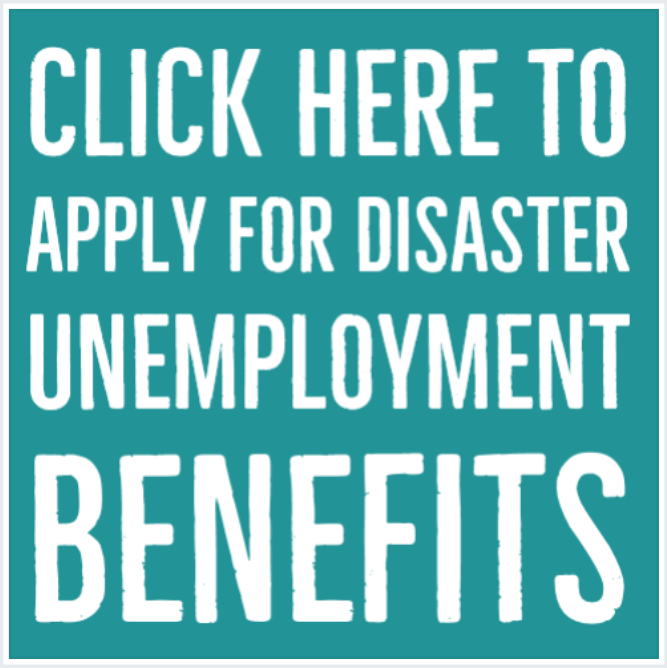 Click here to apply for disaster unemployment benefits