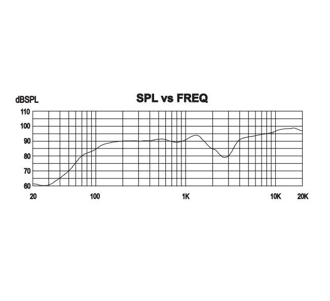 P.Audio Gallardo-4