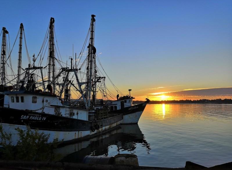 Política Pesquera