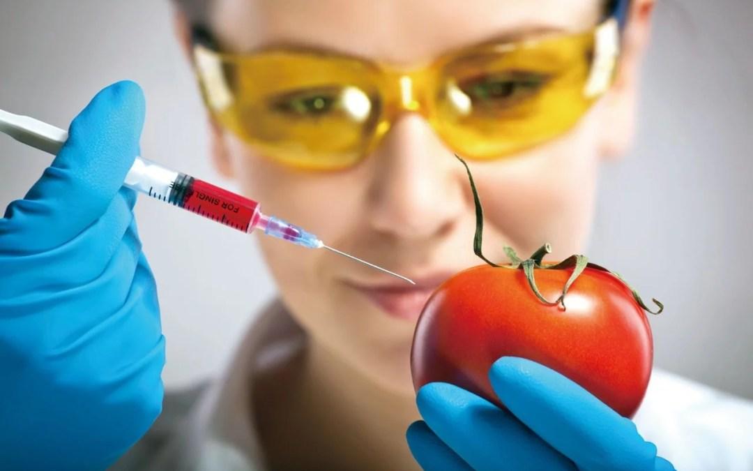 Octubre 16: Día Mundial de la Alimentación