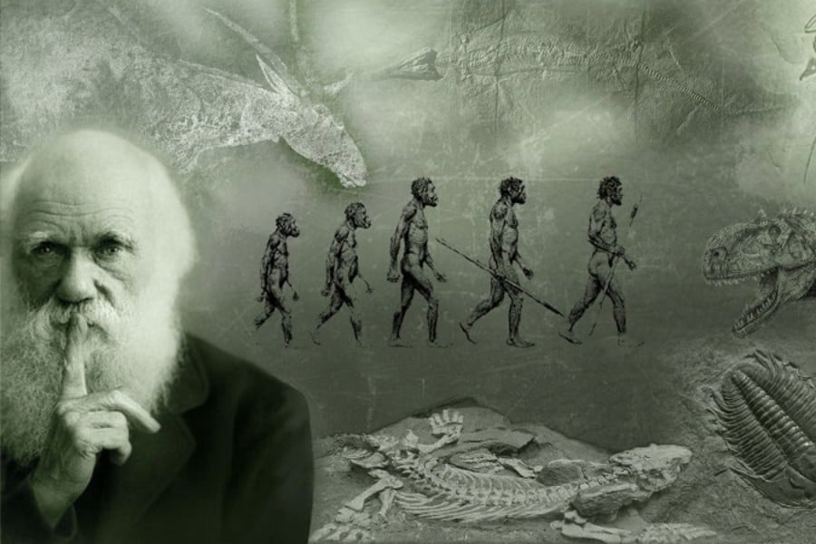 Evolución: de Darwin a Paul Ekman