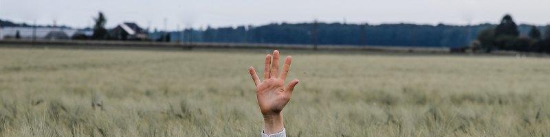 Hand Raised in Field
